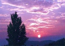 陇县旅游景点:关山森林公园