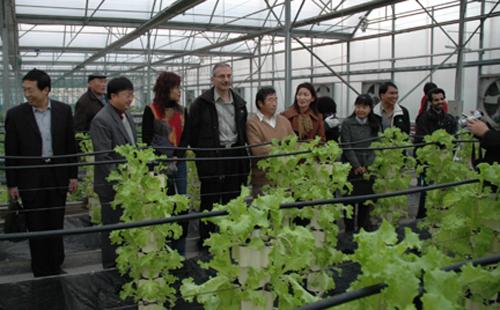 杨凌农业科技示范园(AAA)