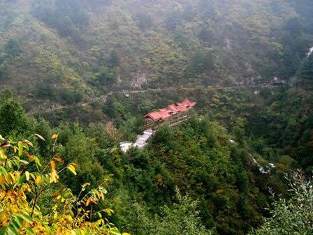 柞水三道井森林公园