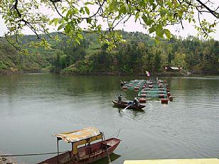 洛南县自然风光:抚龙湖山庄--网箱养鱼