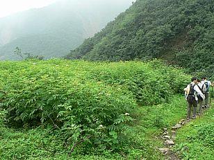 延安市旅游景点:寨关山遗址