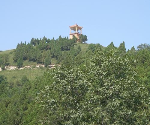 富平县自然风光:金粟山森林公园