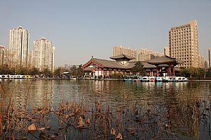 莲湖区丰庆公园见闻