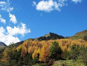 神木天台山