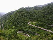 镇坪化龙山自然保护区