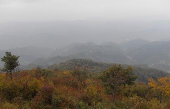 商州秦王山自然风景区