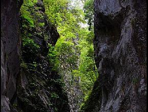 山阳夹石峡