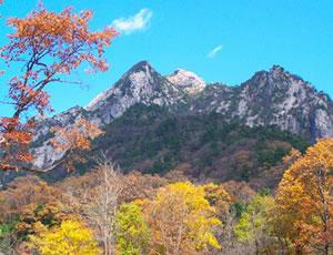 户县朱雀国家森林公园