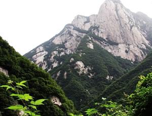 长安莲花洞景区