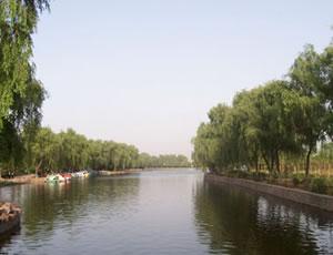 麟游安舒庄森林公园