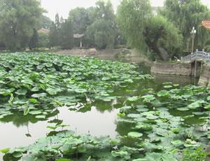 凤翔东湖(饮凤池)