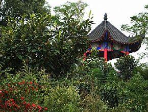 勉县旅游景点:勉县天荡山风景区