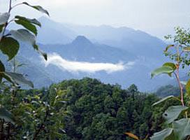 周至翠峰山森林公园