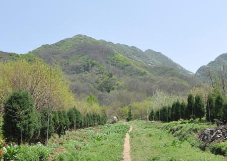 天留山森林公园(天刘山)