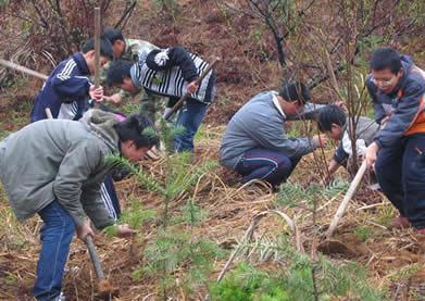3月10日周至九峰乡植树活动