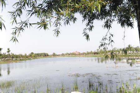 西安渭河生态景观区5月1日起免费向公众开放[图]