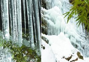 自然奇观:宁强金刚峡冰瀑布[图]