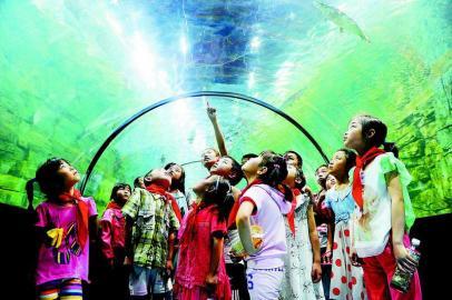 西安市组织留守儿童参观海洋馆[图]