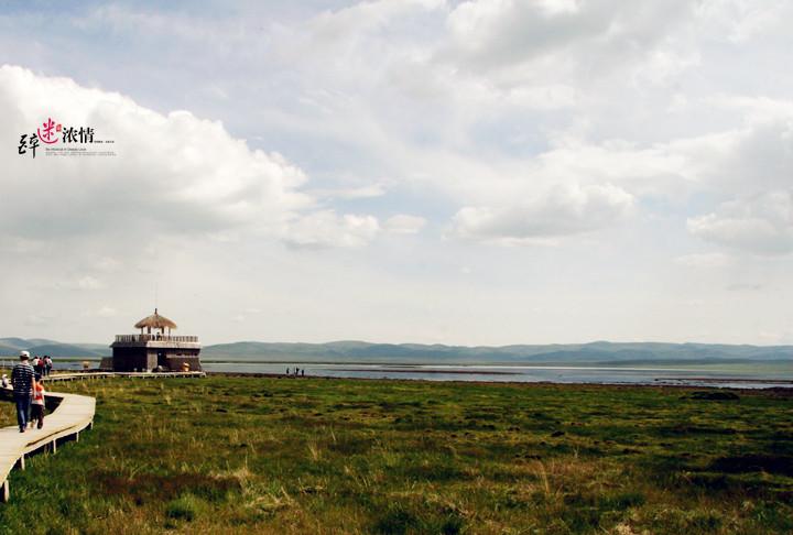 甘南行(五)尕海湖
