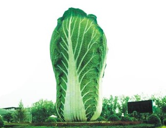 新天地农业科技示范园[图]